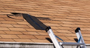 Damaged Roof Shingles - Roof Repairs
